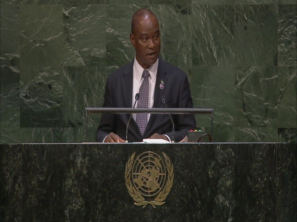 DR. SAMURA ADDRESSING UN