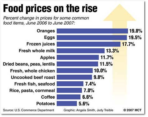 food_prices_rise_2007